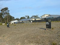 Lot 32 Tahnee Street, Sanctuary Point, NSW 2540