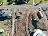 Lot 1/40 Coastal View Drive, Tallwoods Village, NSW 2430