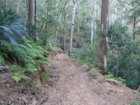 Lots 172 & 176 Connollys Creek Road, Mount George, NSW 2424