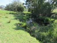 Lot 7, 1925  Willina Rd, Bunyah, NSW 2429