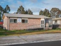 9 Little Quiggin Street, Waratah, Tas 7321