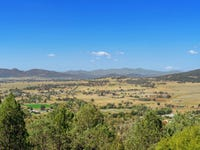 Lot 1 Ray Carter Drive, Quirindi, NSW 2343
