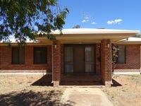 45 Candilla Street, Menindee, NSW 2879