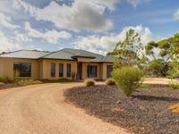 163 Chapple Road, Winkie, SA 5343