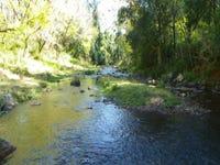 Lot 1 Toms Creek Road, Toms Creek, NSW 2446