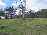 Lot 2, Foggs Crossing Road, Reids Flat, NSW 2586