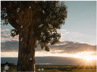 Lot 808, Rural Road, Officer South, Vic 3809