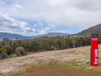 Lot 3 Moss Beds Road, Lachlan, Tas 7140