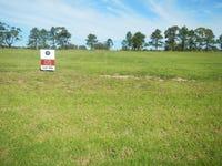 Lot 106, Pastures Drive, Medowie, NSW 2318