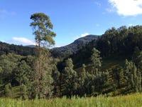 3641 Allyn River Road, Allynbrook, NSW 2311