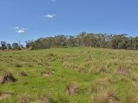 Lot 1, Great Western Highway, Meadow Flat, NSW 2795