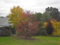 7 Jilwain Avenue, Cabbage Tree Creek, Vic 3889