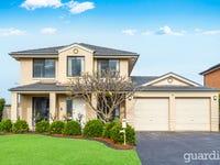 1 Dundrum Grove, Kellyville Ridge, NSW 2155