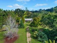 824 Limpinwood Road, Limpinwood, NSW 2484
