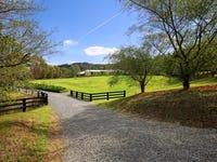 33 Little Creek Road, Berry, NSW 2535