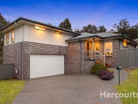 1 Meander Grove, Cameron Park, NSW 2285