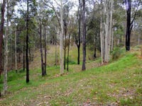 436 Sandy Creek Road, Mount Vincent, NSW 2323