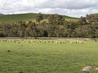Lot 1 Hume Highway, Bookham, NSW 2582