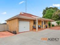 3/11-13 Colville Street, Flinders, NSW 2529