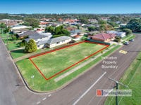84 Allowah Street, Waratah West, NSW 2298