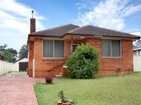 161 Belar Avenue, Villawood, NSW 2163