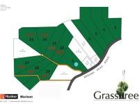 Lot 9 Grasstree Drive, Taloumbi, NSW 2463