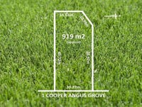 1 COOPER ANGUS GROVE, Wattle Park, SA 5066