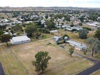 16 Kneipp Street, Ashford, NSW 2361
