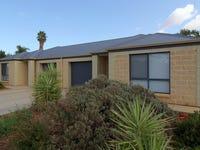 21B Turnbull Terrace, Glossop, SA 5344