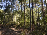 LOT 94 KARRI LANE, Quinninup, WA 6258
