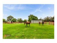 35 Robens Crescent, Catherine Field, NSW 2557