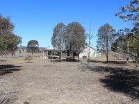 223 Tarrawingee Road, Mumbil, NSW 2820