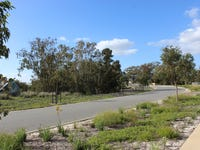 Lot 8809, 244 Banrock Drive, The Vines, WA 6069