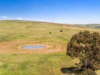 'Horse Paddock', Betterson Road, Hill River, SA 5453