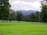Lot 1, 1041 Bucca Road, Central Bucca, NSW 2450
