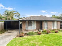 11 Warrindale Close, Langwarrin, Vic 3910