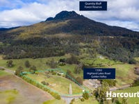 13363 Highland Lakes Road, Golden Valley, Tas 7304