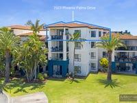 7023 Phoenix Palms Drive, Hope Island, Qld 4212