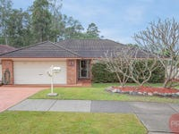 45 Worcester Drive, East Maitland, NSW 2323