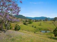 25 Wanungara View, Limpinwood, NSW 2484