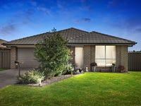 45 Ashton Drive, Heddon Greta, NSW 2321