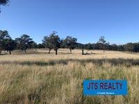 Lot 1 DP 506025 Muscle Creek Road, Muscle Creek, NSW 2333
