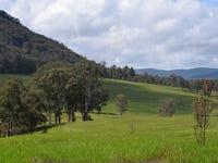 311a Urbenville Road, Urbenville, NSW 2475