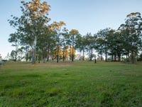 23 Chelmsbrook Drive, Rainbow Flat, NSW 2430