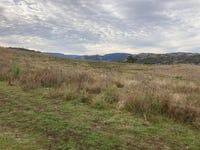 2021 PEMBROKE ROAD, Cassilis, NSW 2329