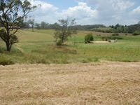 Lot 13, 13  Strawberry Road, Warrell Creek, NSW 2447