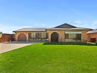 66 Tallagandra Drive, Quakers Hill, NSW 2763