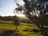 3150 Jerangle Road, Jerangle, NSW 2630