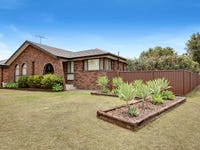 14 Whistler Avenue, Ingleburn, NSW 2565