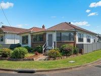 19 Agnes Street, Mayfield, NSW 2304